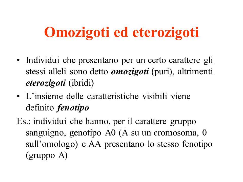 Omozigoti ed eterozigoti