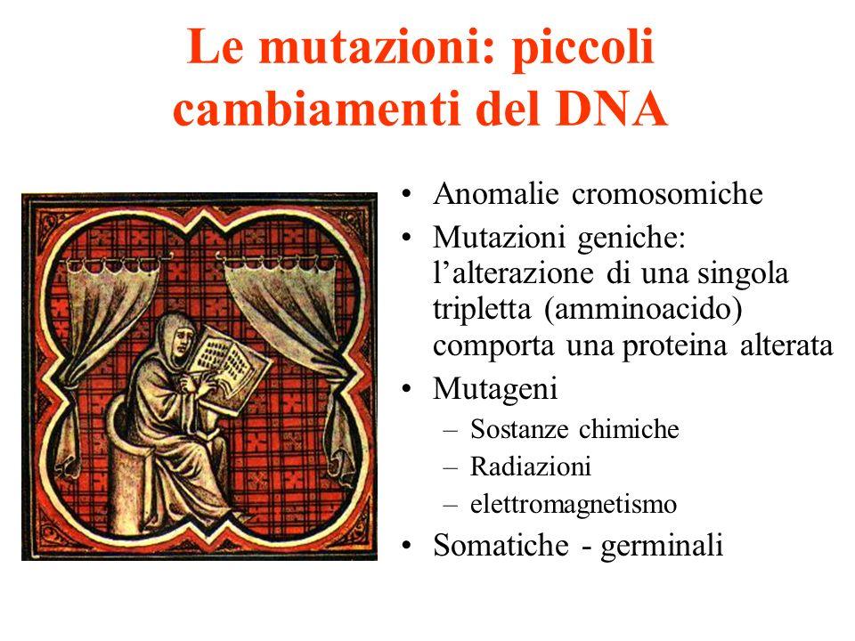 Le mutazioni: piccoli cambiamenti del DNA