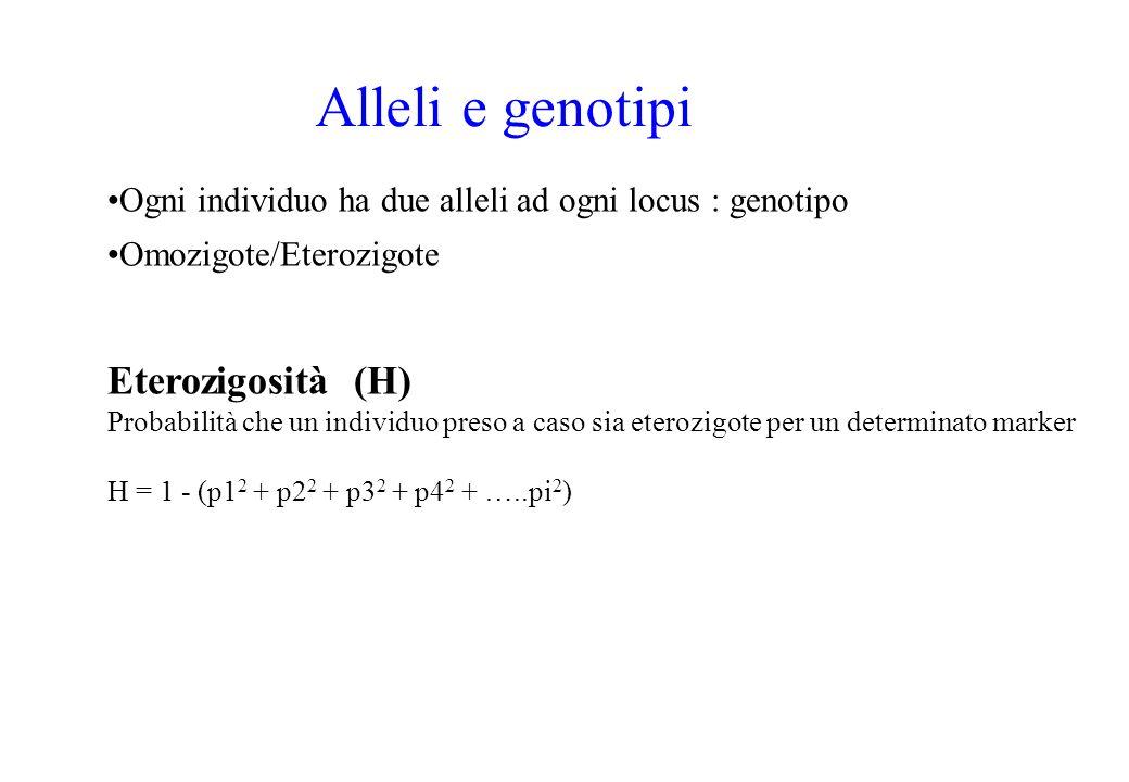Alleli e genotipi Eterozigosità (H)