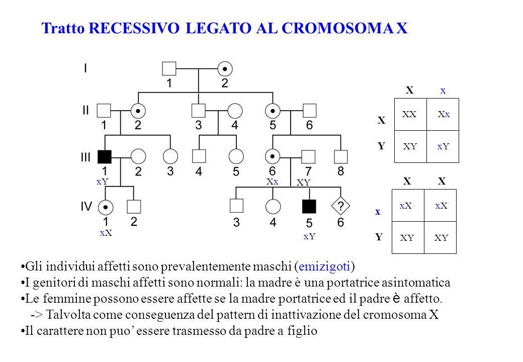 Tratto RECESSIVO LEGATO AL CROMOSOMA X