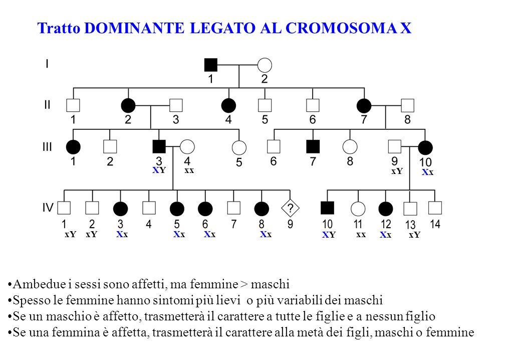 Tratto DOMINANTE LEGATO AL CROMOSOMA X