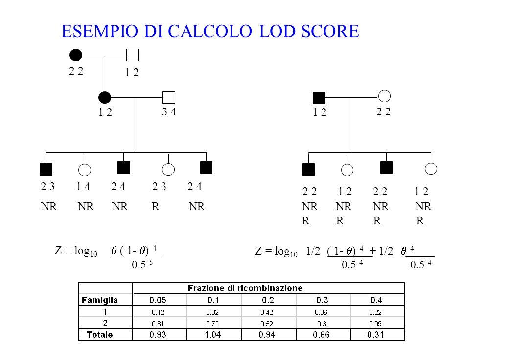 ESEMPIO DI CALCOLO LOD SCORE