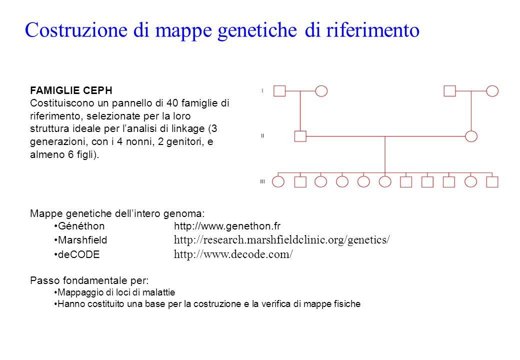 Costruzione di mappe genetiche di riferimento