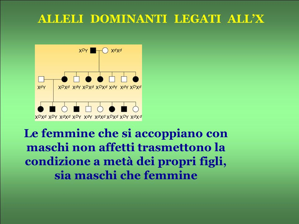 ALLELI DOMINANTI LEGATI ALL'X