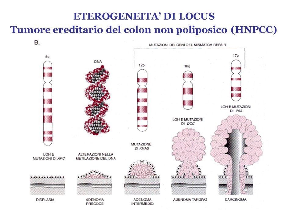 ETEROGENEITA' DI LOCUS