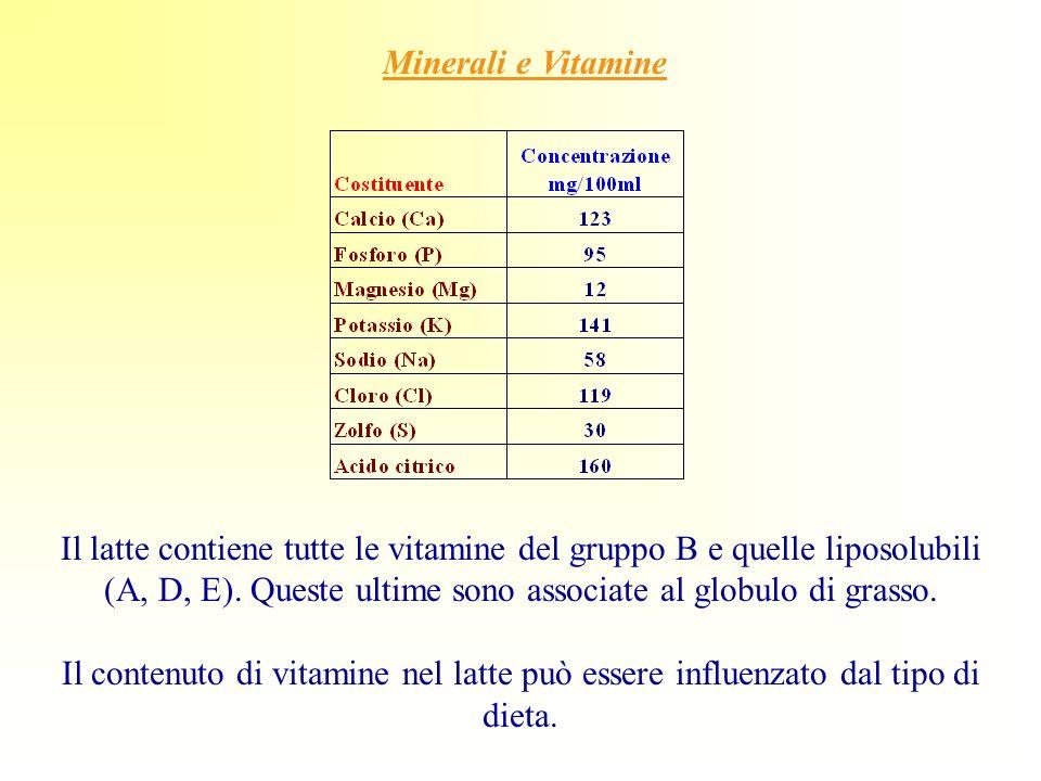 Minerali e Vitamine