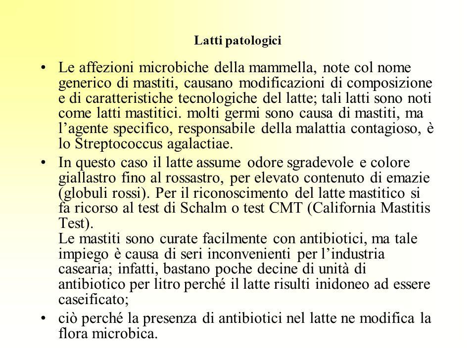 Latti patologici