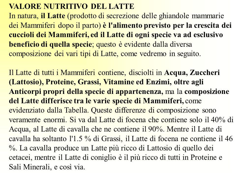 VALORE NUTRITIVO DEL LATTE