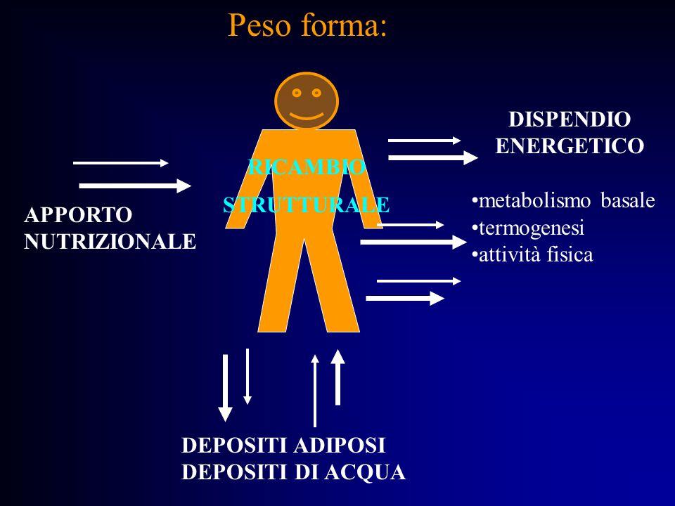 Peso forma: DISPENDIO ENERGETICO metabolismo basale RICAMBIO