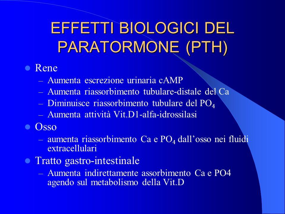 EFFETTI BIOLOGICI DEL PARATORMONE (PTH)