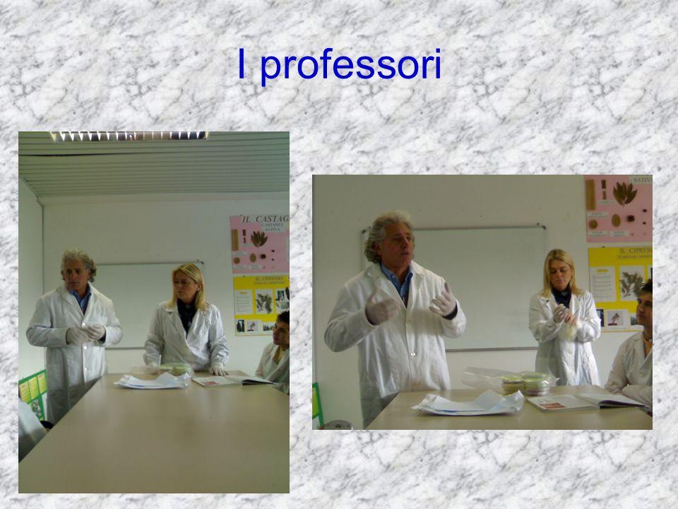 I professori