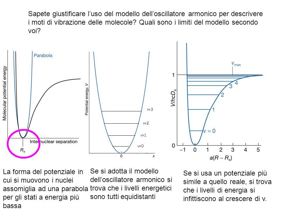 Sapete giustificare l'uso del modello dell'oscillatore armonico per descrivere i moti di vibrazione delle molecole Quali sono i limiti del modello secondo voi
