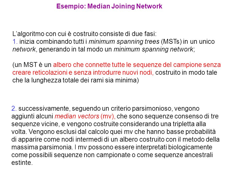 Esempio: Median Joining Network