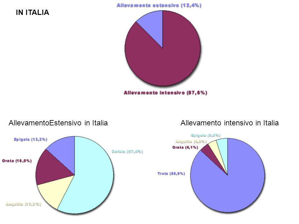 IN ITALIA AllevamentoEstensivo in Italia Allevamento intensivo in Italia