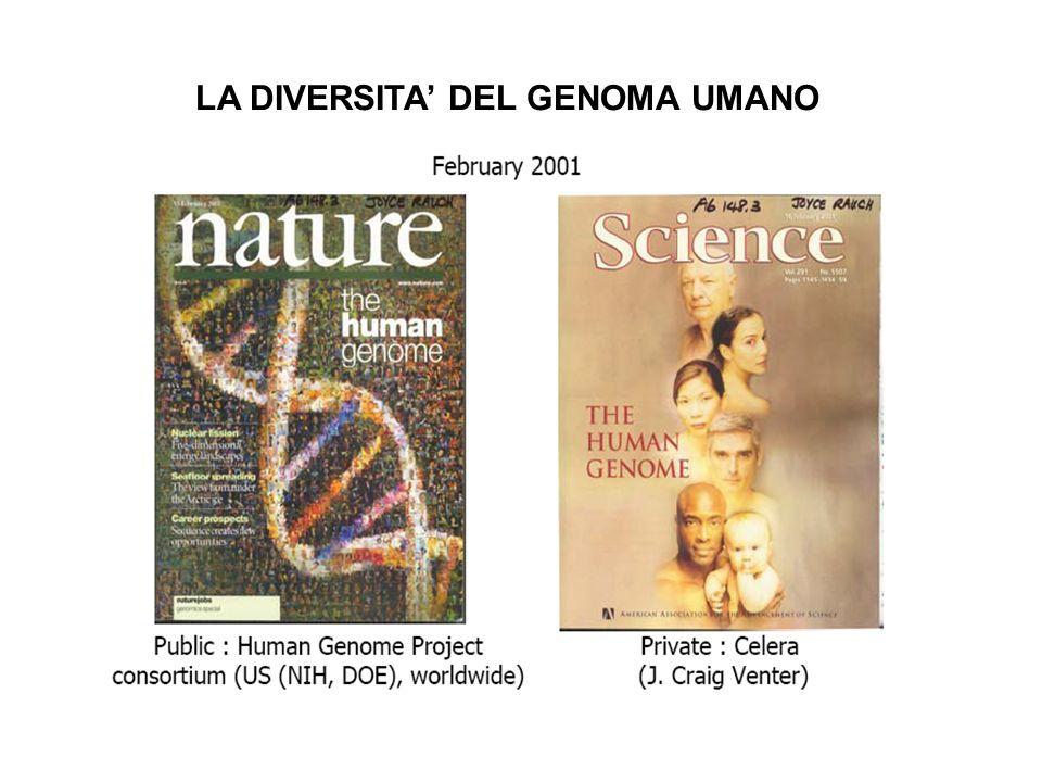 LA DIVERSITA' DEL GENOMA UMANO