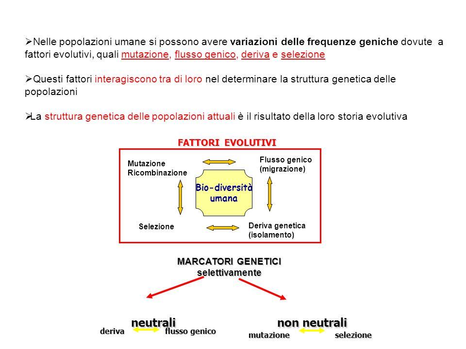 Nelle popolazioni umane si possono avere variazioni delle frequenze geniche dovute a fattori evolutivi, quali mutazione, flusso genico, deriva e selezione