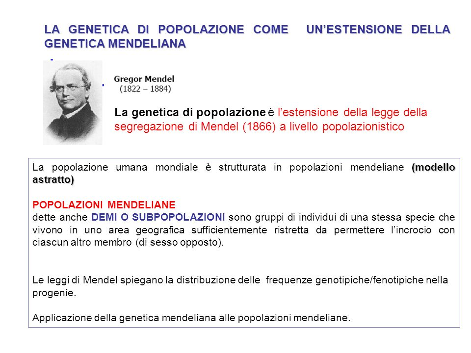 LA GENETICA DI POPOLAZIONE COME UN'ESTENSIONE DELLA GENETICA MENDELIANA