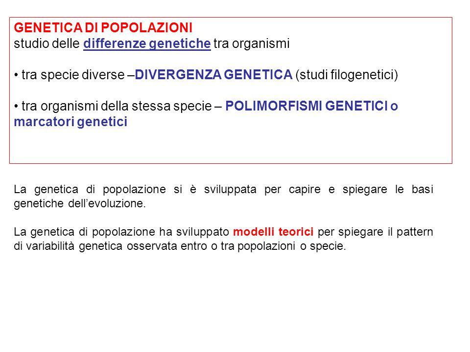 GENETICA DI POPOLAZIONI