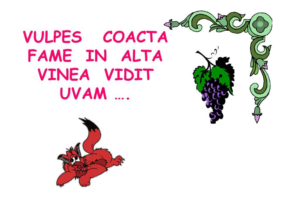 VULPES COACTA FAME IN ALTA VINEA VIDIT UVAM ….