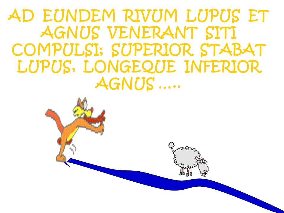 AD EUNDEM RIVUM LUPUS ET AGNUS VENERANT SITI COMPULSI; SUPERIOR STABAT LUPUS, LONGEQUE INFERIOR AGNUS …..