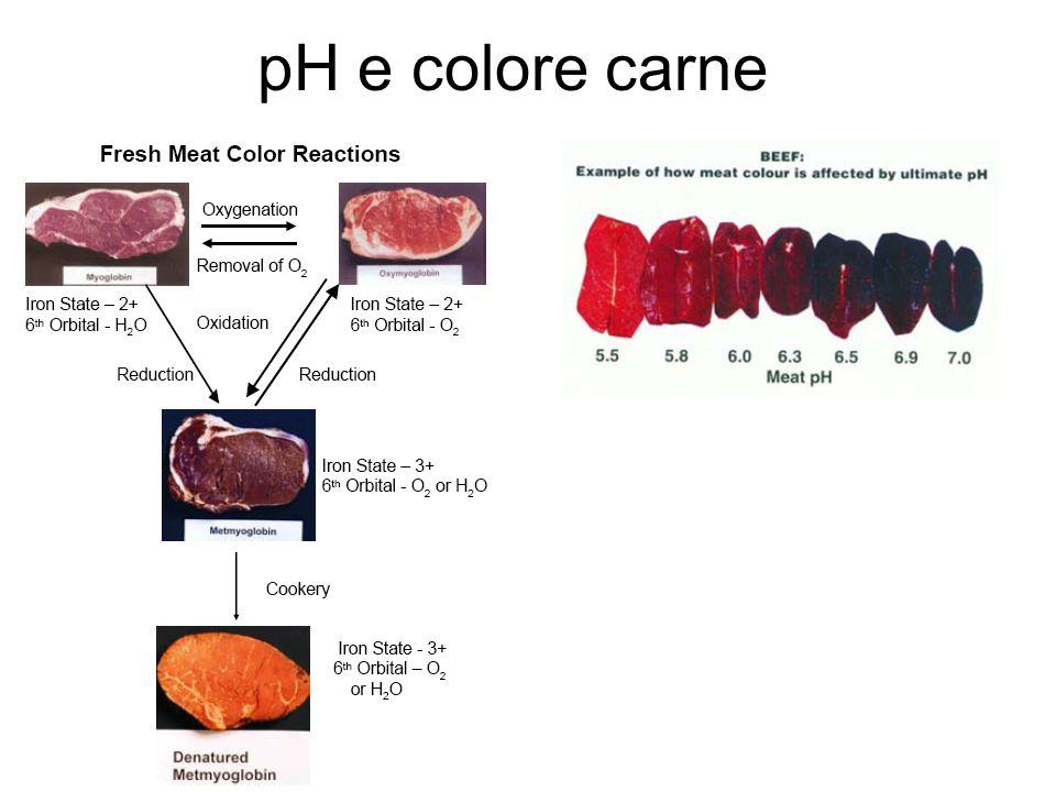 pH e colore carne