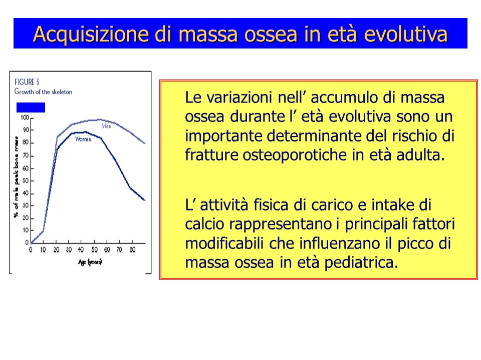 Acquisizione di massa ossea in età evolutiva