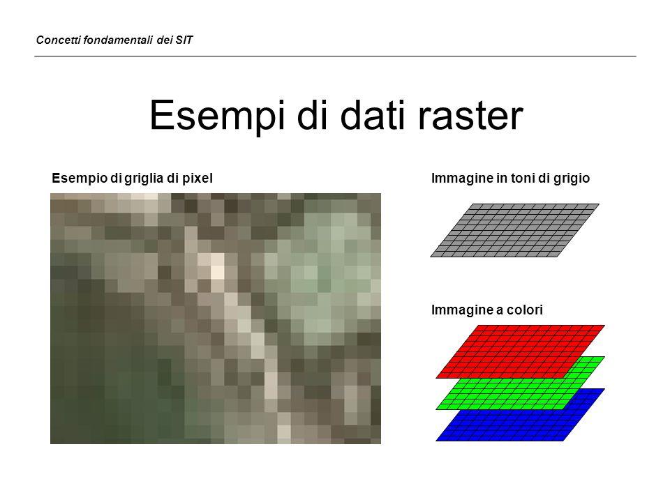 Esempi di dati raster Esempio di griglia di pixel