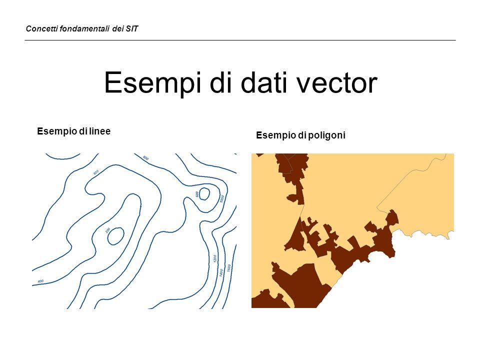 Esempi di dati vector Esempio di linee Esempio di poligoni