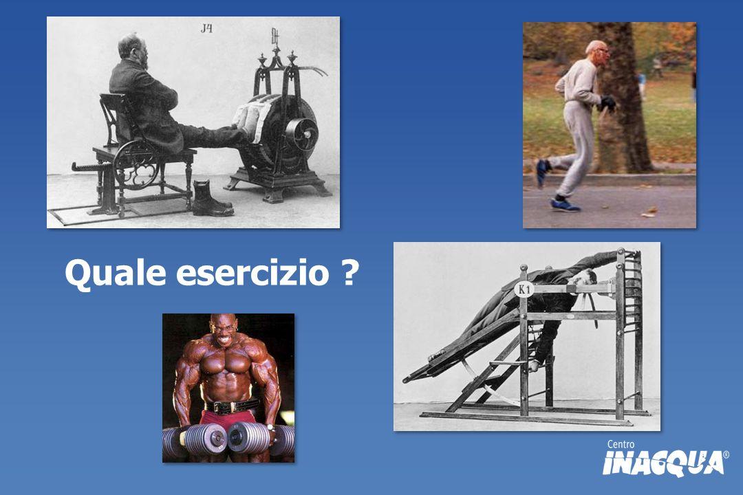 Quale esercizio