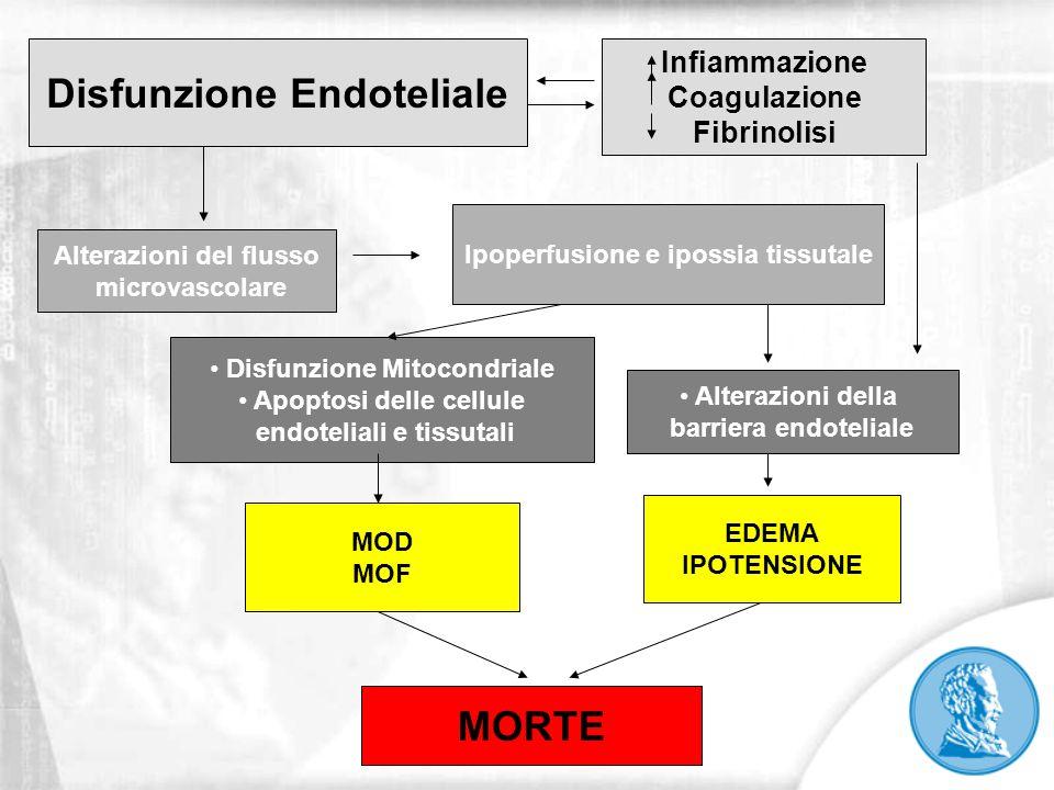 Disfunzione Endoteliale MORTE
