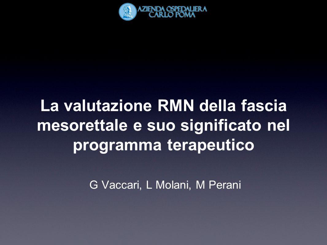 G Vaccari, L Molani, M Perani