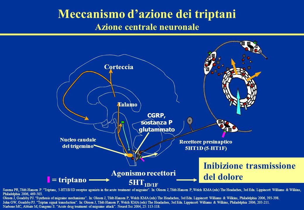 Meccanismo d'azione dei triptani Azione centrale neuronale