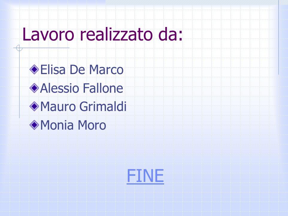 Lavoro realizzato da: FINE Elisa De Marco Alessio Fallone