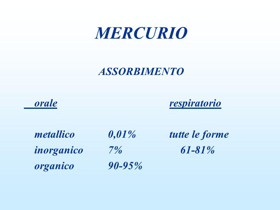 MERCURIO ASSORBIMENTO orale respiratorio