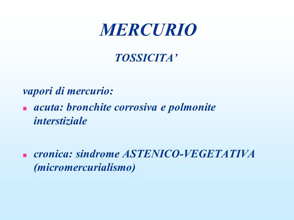 MERCURIO TOSSICITA' vapori di mercurio: