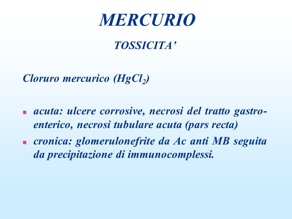 MERCURIO TOSSICITA' Cloruro mercurico (HgCl2)