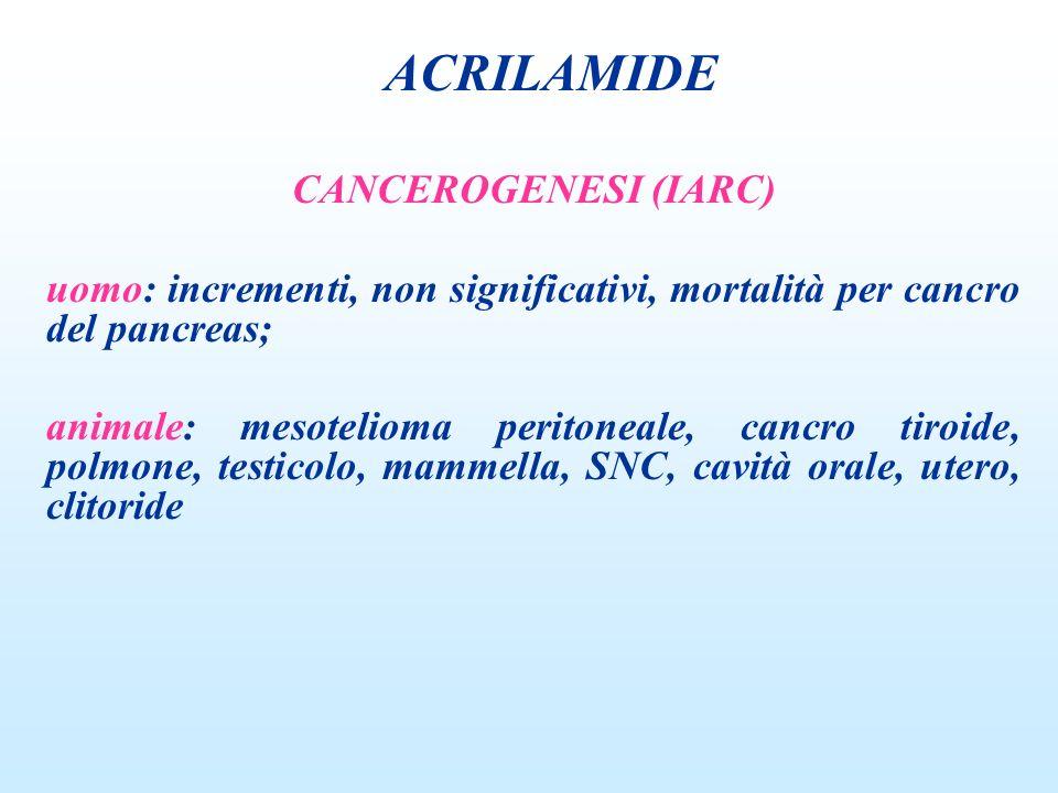 ACRILAMIDE CANCEROGENESI (IARC)