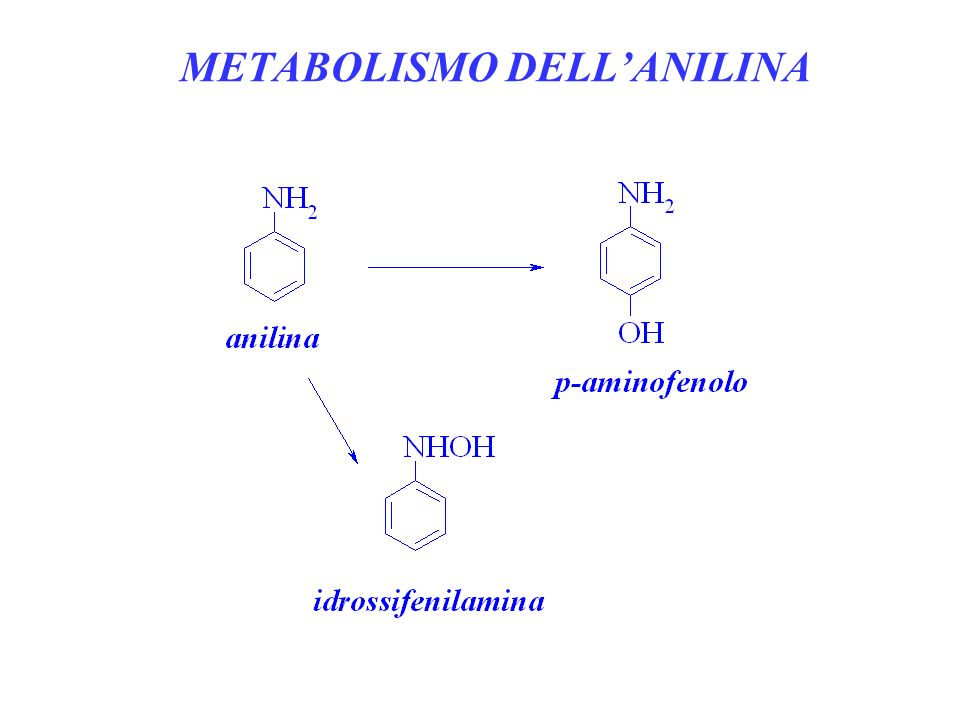 METABOLISMO DELL'ANILINA