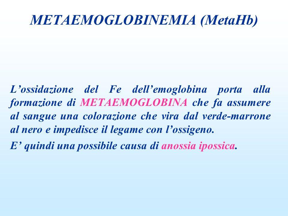 METAEMOGLOBINEMIA (MetaHb)
