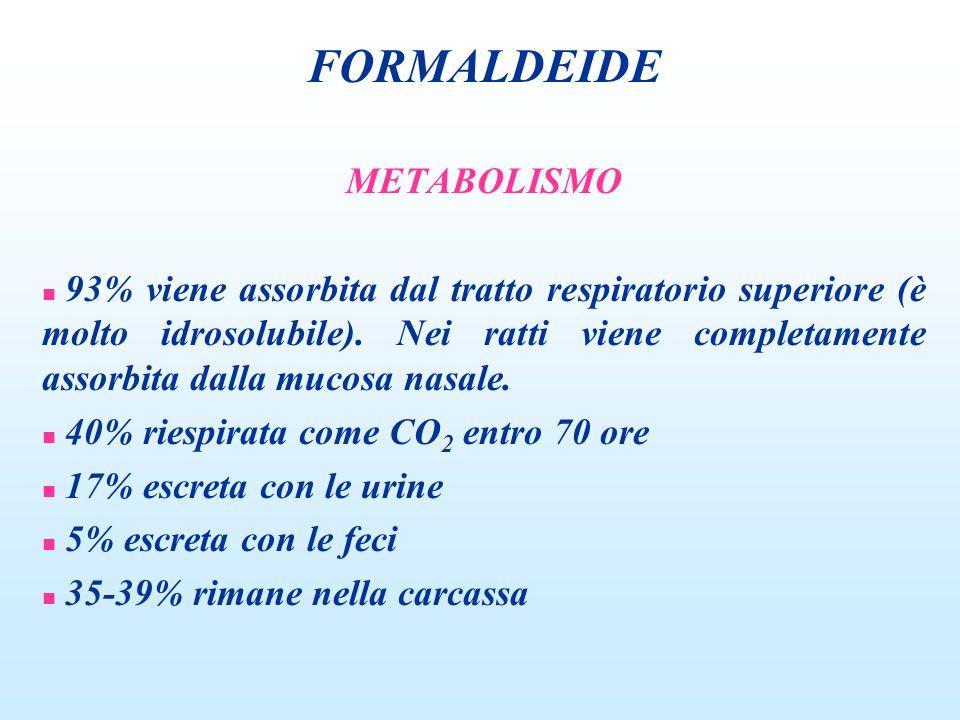 FORMALDEIDE METABOLISMO