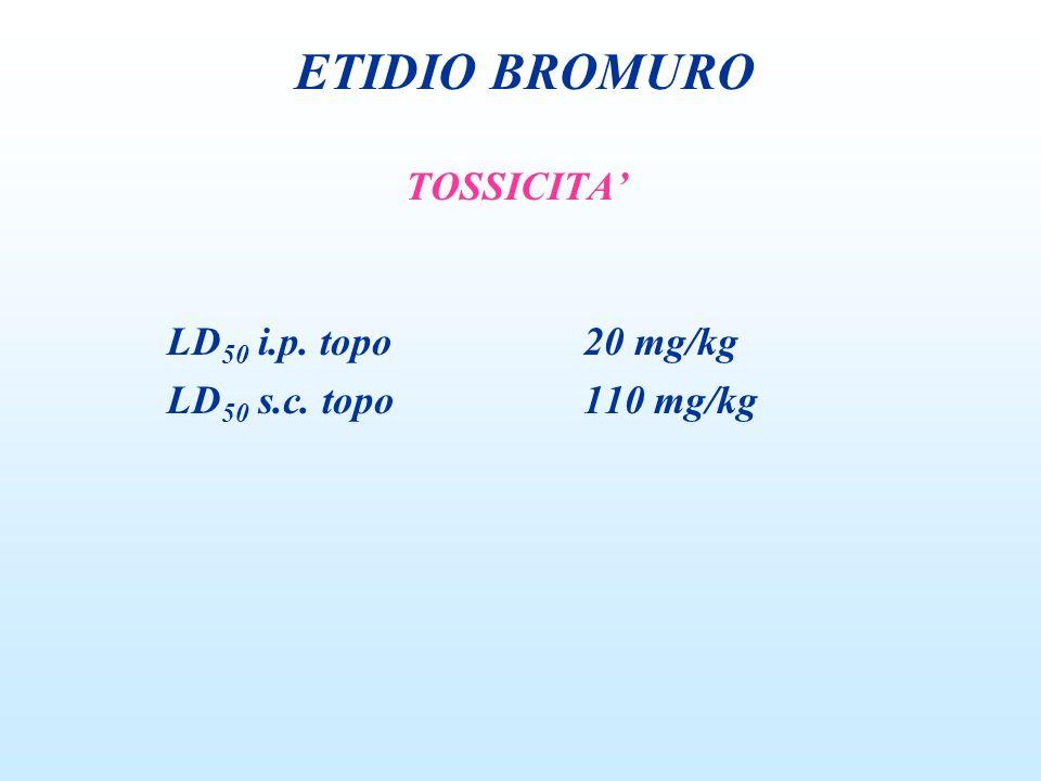 ETIDIO BROMURO TOSSICITA' LD50 i.p. topo 20 mg/kg