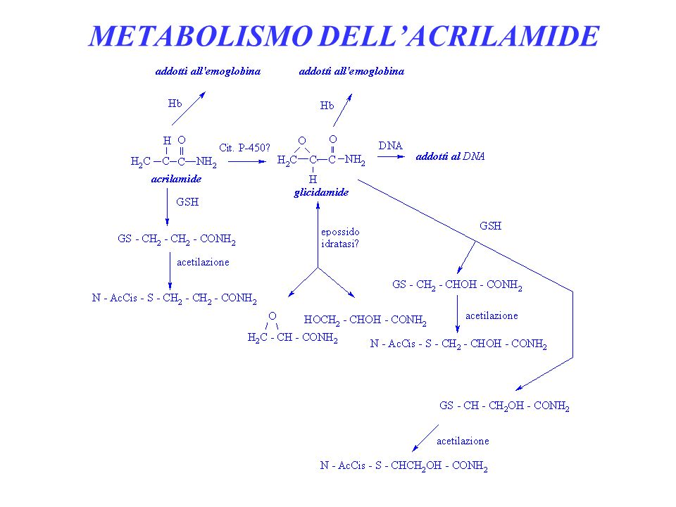 METABOLISMO DELL'ACRILAMIDE