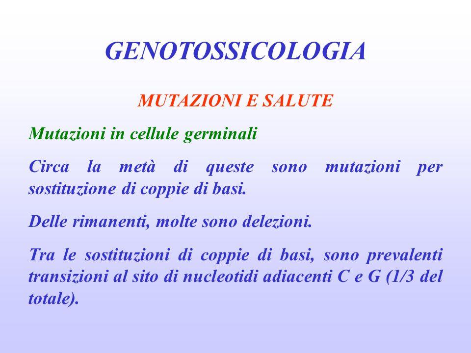GENOTOSSICOLOGIA MUTAZIONI E SALUTE Mutazioni in cellule germinali