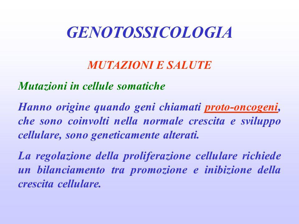 GENOTOSSICOLOGIA MUTAZIONI E SALUTE Mutazioni in cellule somatiche