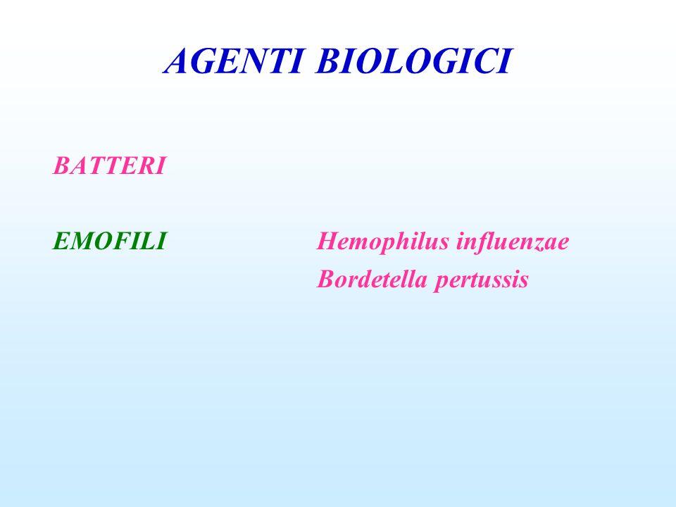AGENTI BIOLOGICI BATTERI EMOFILI Hemophilus influenzae