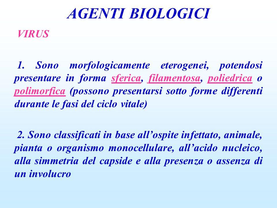 AGENTI BIOLOGICI VIRUS