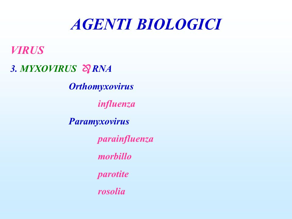 AGENTI BIOLOGICI VIRUS 3. MYXOVIRUS  RNA Orthomyxovirus influenza