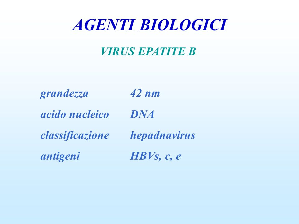 AGENTI BIOLOGICI VIRUS EPATITE B grandezza 42 nm acido nucleico DNA