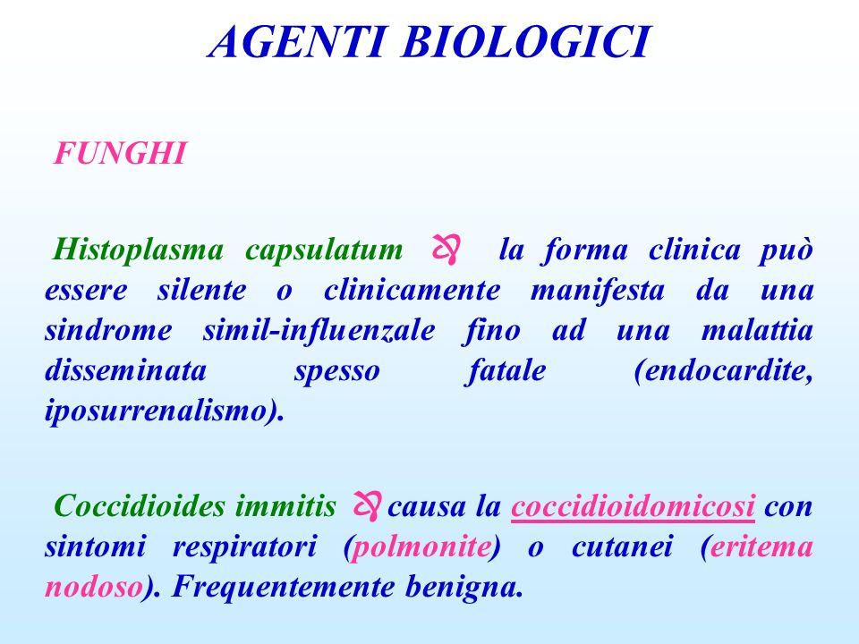 AGENTI BIOLOGICI FUNGHI