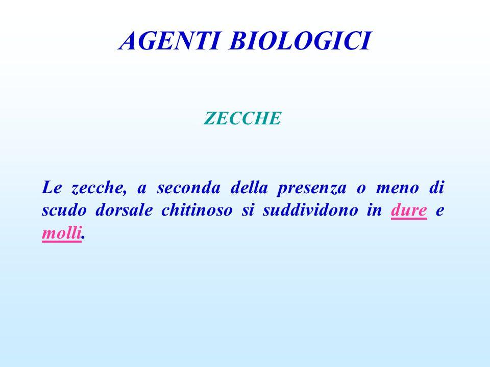 AGENTI BIOLOGICI ZECCHE